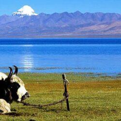 Simikot to Kailash Pilgrimage Trek