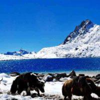 Bhutan Snowmans Trek